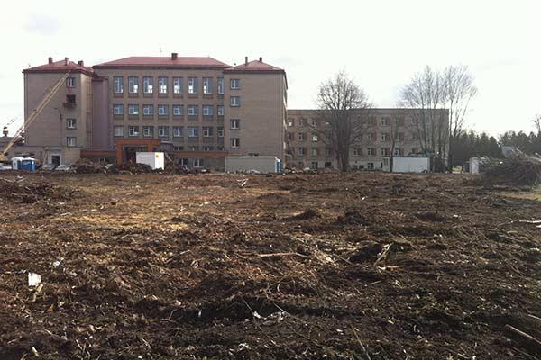 Вырубка деревьев возле 1-й школы: жители возмущаются, дума успокаивает