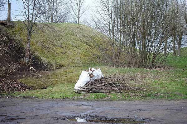О помощи РГД владельцам недвижимости в уборке прилегающей территории осенью
