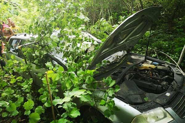 Смертельное ДТП под Резекне: машину после столкновения с лосем нашли спустя несколько часов