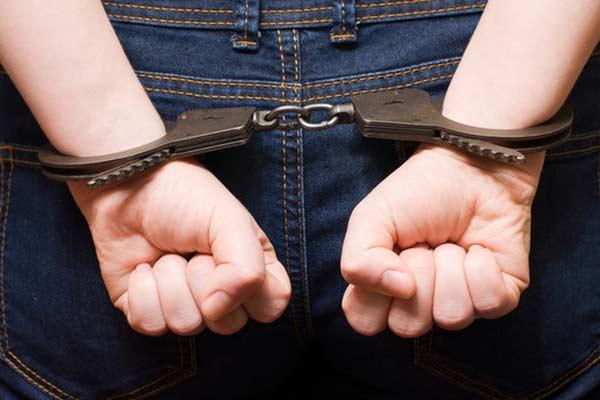 Подозреваемого в краже из компьютерного магазина, задержали в течение дня (видео)